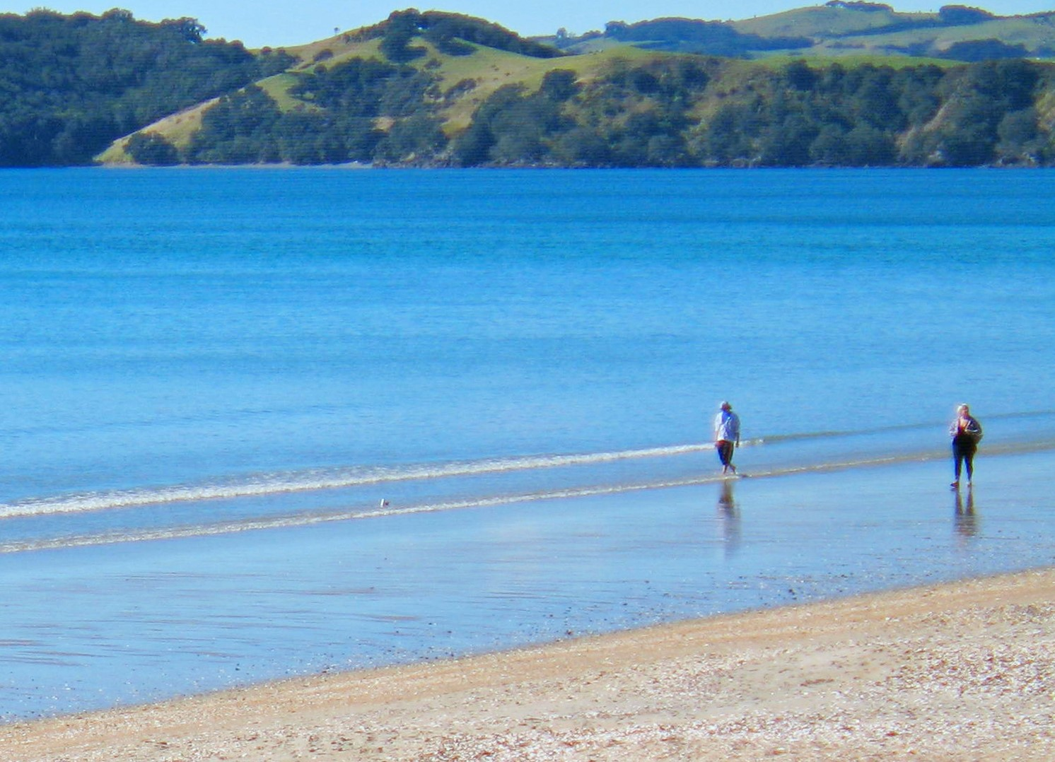 Things to do on Waiheke Island
