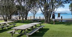 Man o War Bay Winery with picnic tables on the grass beside the beach and sea.