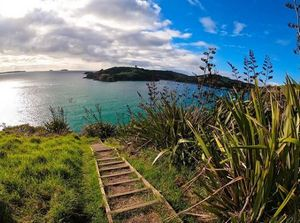 Headland on The Gulf Sculpture Walk pathway with steps and flax bushes overlooking blue sea and sky at Matiatia Bay, Waiheke Island